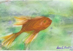 """Single Fish,"" by Susan E. Hendrich"